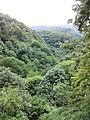 Смоларски водопад 62.jpg