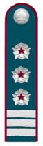 Советник гос.гражданской службы РФ 1 класса ФНС РФ.png