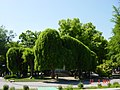 Стара Загора - panoramio (14).jpg
