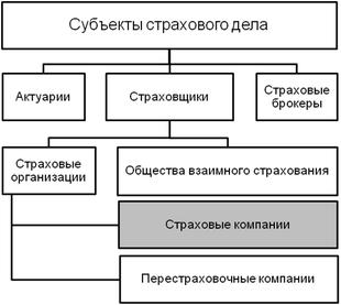 Иерархическая диаграмма субъектов страхового рынка. Страховая компания