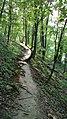 Тропа - panoramio (7).jpg