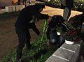 גינון גרילה חיפה 2011 02 14.jpg