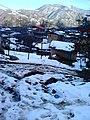 برف - panoramio (1).jpg
