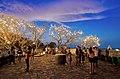 เขาวัง พระนครคีรี เพชรบุรี Phra Nakhon Khiri Historical Park, By PanoramaMAN 4.jpg