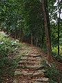 三十六湾登山道 - Sanshiliuwan Mountain Trail - 2014.12 - panoramio.jpg