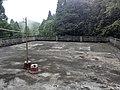 信宜合水鹿湖林场20150501 - panoramio (28).jpg