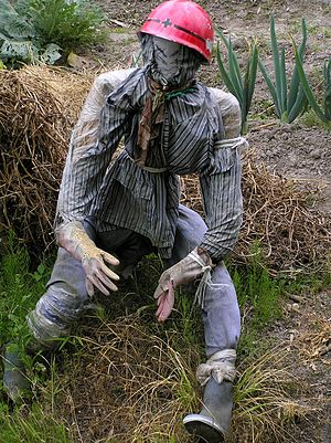 Scarecrow - A scarecrow wearing a helmet (Japan)