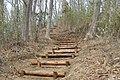 林道の階段 - panoramio.jpg
