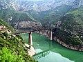 柳林河铁路桥-2009 - panoramio.jpg
