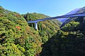 第一大川橋梁付近の風景 - panoramio (1).jpg
