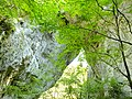 羅生門3 - panoramio.jpg