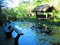 自然生態植物園.jpg