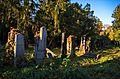 009 - Wien Zentralfriedhof 2015 (23206297896).jpg