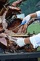 02018 0631 Nordvorkarpatisches Rindfleisch.jpg