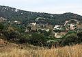 128 La vall de la riera de Coma Clara des del camí del Greny (Alella).JPG
