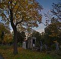 155 - Wien Zentralfriedhof 2015 (22931038740).jpg