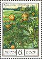 1975 CPA 4531.jpg