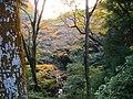 1 Minookōen, Minoo-shi, Ōsaka-fu 562-0002, Japan - panoramio (27).jpg