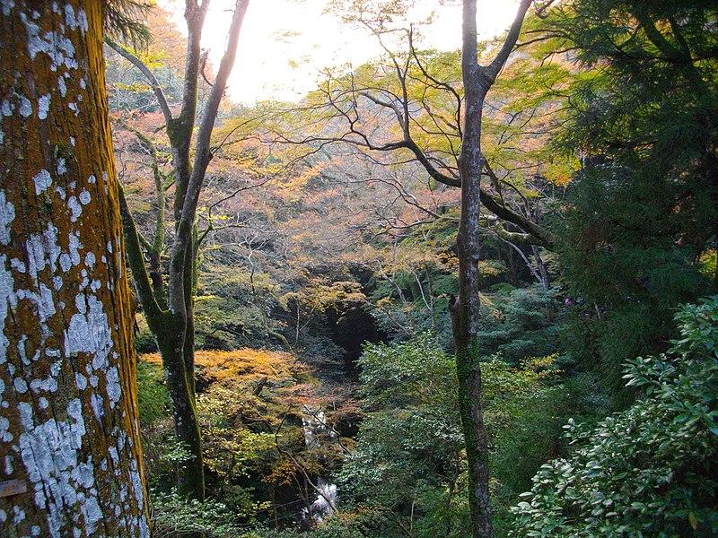 File:1 Minookōen, Minoo-shi, Ōsaka-fu 562-0002, Japan - panoramio (27).jpg