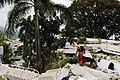 2010년 중앙119구조단 아이티 지진 국제출동100119 몬타나호텔 수색활동 (551).jpg