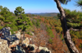 20131103 1310 Ouachita Mountains.png