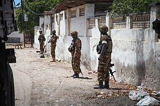 Operation Linda Nchi military operation