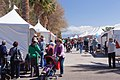 2013 Tucson Festival of Books.jpg