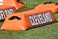 2015 Cleveland Browns Training Camp (20251829571).jpg