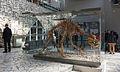 2015 Jaskinia Niedźwiedzia w Kletnie, szkielet niedźwiedzia jaskiniowego 02.JPG