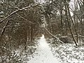2016-02-15 08 30 20 View north along a snow-covered walking trail along Lees Corner Road (Virginia State Secondary Route 645) in the Armfield Farm section of Chantilly, Fairfax County, Virginia.jpg