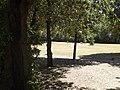 2017-06-20 Giardino di Boboli 57.jpg