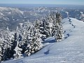 2018-02-24 (119) View from Gemeindealpe.jpg