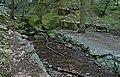 20180522140DR Dohna Naturschutzgebiet Spargrund.jpg