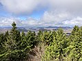2019-10-27 11 56 26 View northwest across a Red Spruce forest from the observation tower on Spruce Knob in Pendleton County, West Virginia.jpg