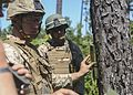 2nd CEB brings down trees during demolition range 150814-M-DT430-073.jpg