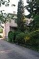 46-101-0095 Lviv SAM 6186.jpg