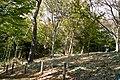 4 Chome-12 Masugata, Tama-ku, Kawasaki-shi, Kanagawa-ken 214-0032, Japan - panoramio (5).jpg