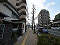 4 Chome Koyasumachi, Hachiōji-shi, Tōkyō-to 192-0904, Japan - panoramio (79).jpg