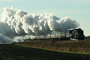LNER Class A4 4488 Union of South Africa - Union of South Africa pulls 2012 excursion train near Deeping St Nicholas