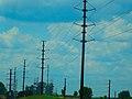 ATC Power Line - panoramio (139).jpg