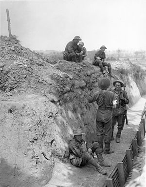 49th Battalion (Australia) - 49th Battalion wounded during the fighting around Messines, 7 June 1917