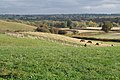 A field with horses, Red House Farm - geograph.org.uk - 1560397.jpg