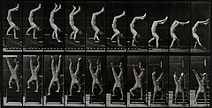 A man walking on his hands. Photogravure after Eadweard Muyb Wellcome V0048686.jpg
