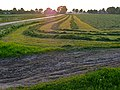A photo of evening sunset over the grass fields in Laaghalerveen; Drenthe, 2012.jpg