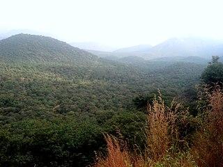 Malai Mahadeshwara Wildlife Sanctuary wildlife sanctuary
