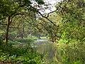 Acharya Jagadish Chandra Bose Indian Botanic Garden - Howrah 2011-03-20 1977.JPG
