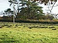 Across Field Footpath, Llanteg - geograph.org.uk - 1042786.jpg