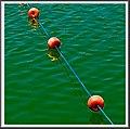 Aguas verdes II.jpg
