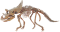 Agujaceratops-Triebold-800px.png