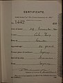 Ah Ying Auckland Chinese poll tax certificate butts Certificate issued at Auckland.jpg